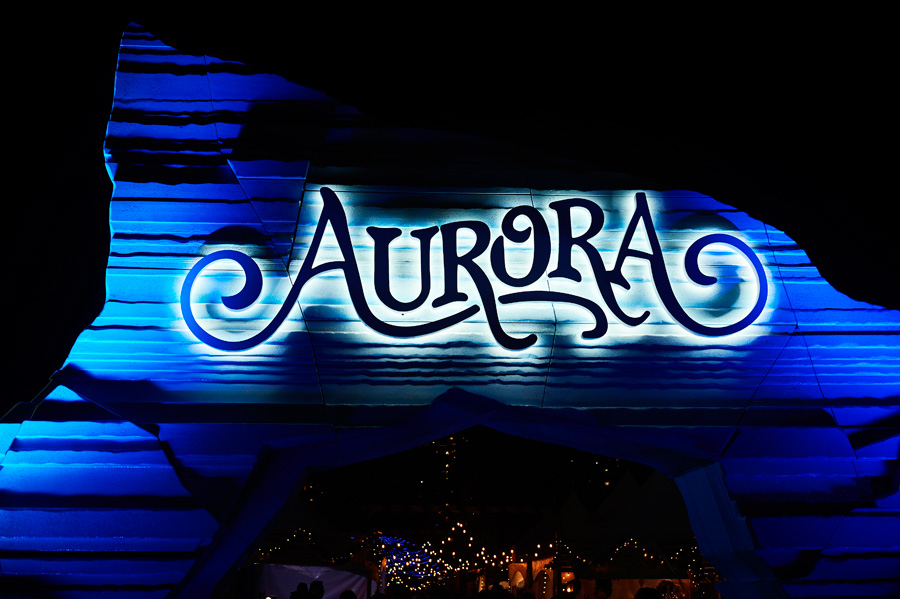 Aurora Winter Lights Festival Engagement